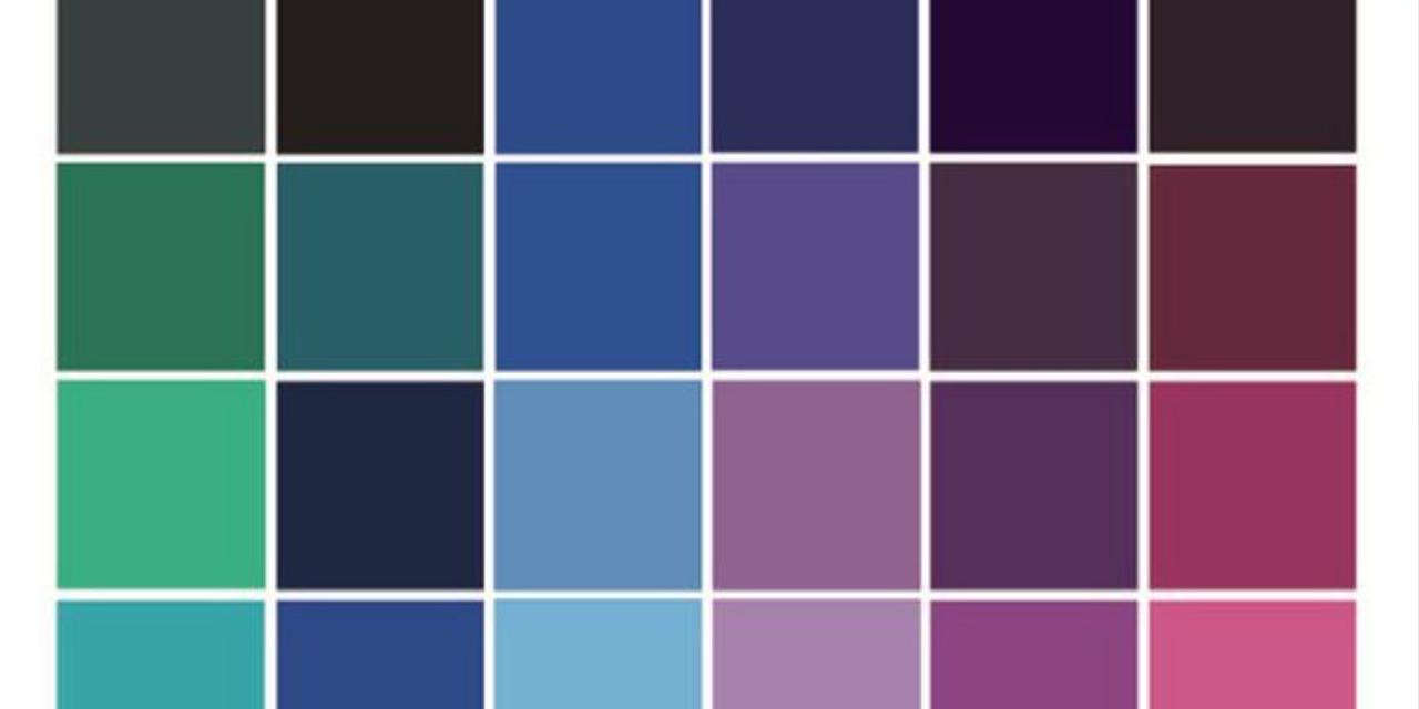 paleta-de-cores-brozeada-bronzeamento-iaraleao-consultora