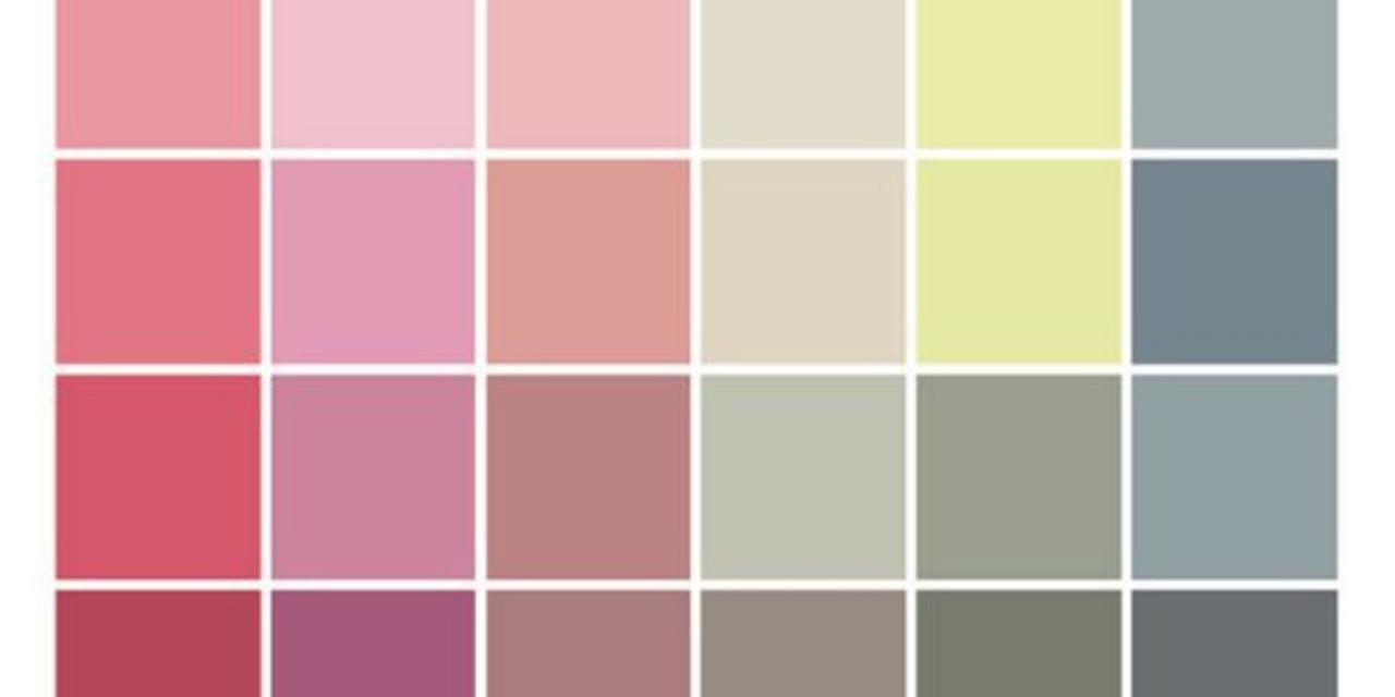 cores-paleta-como-usar-iaraleao-consultora